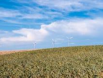 与风轮机的金黄麦田反对蓝天 库存图片