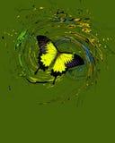 与飞溅和漩涡的蓝色蝴蝶 免版税图库摄影