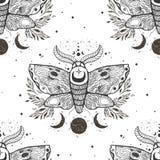 与飞蛾蝴蝶的传染媒介无缝的样式 手凹道例证 设计纹身花刺艺术 神秘主义者和隐密手拉的标志 库存例证