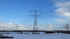 与飞行在传输塔附近的鸟的冬天风景 库存图片