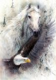 与飞行老鹰美丽的图画例证的白马 图库摄影