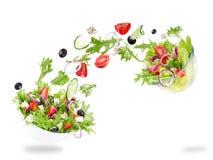 与飞行菜成份的新鲜的沙拉 库存图片
