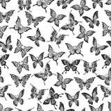 与飞行蝴蝶的无缝的模式 免版税库存照片