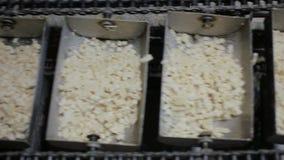 与食物生产的装配线传送带 股票录像