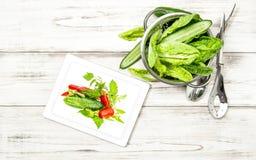 与食谱书的蔬菜沙拉菜压片个人计算机 图库摄影