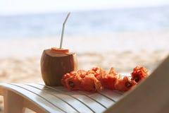 与饮用的strawand列伊的椰子在海滩长凳或轻便折叠躺椅与蓝色海洋和白色沙子开花在背景 免版税库存图片