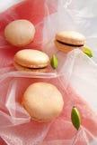 与香草奶油的蛋白杏仁饼干 免版税库存照片