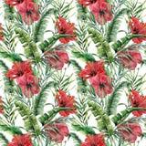与香蕉叶子和hybiscus的水彩大无缝的样式 手画绿叶热带棕榈早午餐和红色 图库摄影