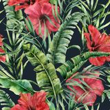 与香蕉叶子和hybiscus的水彩无缝的样式 手画绿叶热带棕榈早午餐和红色花 免版税库存图片