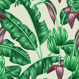与香蕉叶子的无缝的样式 热带叶子、花和果子的装饰图象 做的背景无 免版税库存图片