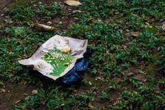与香蕉叶子的食品废弃部在草在雅加达拍的围场照片印度尼西亚 库存照片