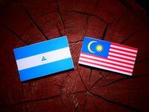 与马来西亚旗子的尼加拉瓜的旗子在被隔绝的树桩 向量例证