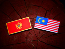 与马来西亚旗子的门的内哥罗的旗子在被隔绝的树桩 向量例证