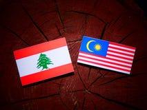 与马来西亚旗子的黎巴嫩旗子在被隔绝的树桩 皇族释放例证