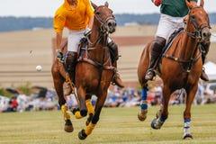 与马疾驰的马球比赛 免版税库存照片