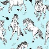 与马的手拉的无缝的背景 免版税库存照片