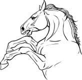 与马的着色页 库存照片
