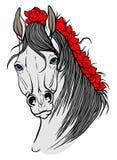 与马画象的页 免版税库存照片