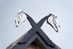 与马头骨的屋顶 免版税库存图片