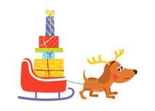 与驯鹿鹿角的狗拉扯有礼物的爬犁 库存图片
