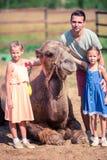 与骆驼的家庭在动物园里在温暖和晴朗的夏日 活跃家庭休闲 库存图片