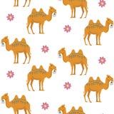 与骆驼的无缝的样式 免版税库存照片