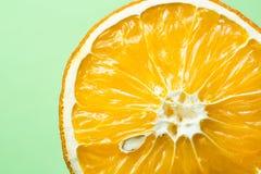 与骨头特写镜头在浅绿色的背景,健康食品概念的美丽的干桔子 免版税库存图片