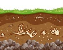与骨头的土壤层数 向量例证