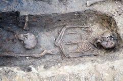 与骨骼和头骨的考古学挖掘 免版税库存照片