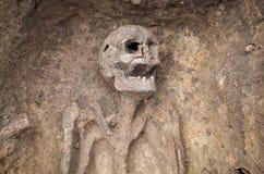 与骨骼的考古学挖掘 库存照片