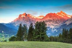 与高多雪的山的高山农村风景,格林德瓦,瑞士,欧洲 免版税库存图片