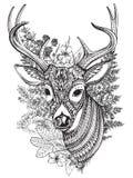 与高细节装饰品的手拉的有角的鹿 免版税库存照片
