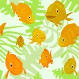 与鱼和海藻的无缝的样式 库存照片