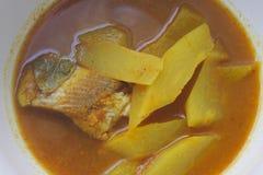 与鱼和番木瓜的酸汤 免版税库存图片