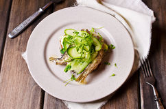 与鱼的单片三明治 免版税库存图片