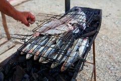 与鱼的烤肉 库存图片