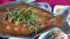 与鱼的热和酸汤在浓缩的水,泰国传统食物中 图库摄影