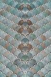 与鱼鳞纹理的建筑滤网细节 免版税库存图片