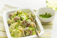 与鲕梨和酸性稀奶油选矿的土豆沙拉 库存图片