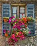 与鲜花的葡萄酒窗口 图库摄影