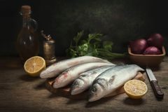 与鲜鱼和成份的静物画烹调的 免版税图库摄影