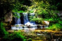 与鲜绿色的树围拢的瀑布在一个美丽的森林离开 库存照片