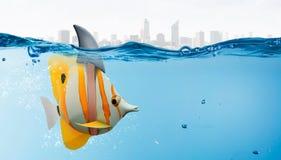 与鲨鱼轻碰的异乎寻常的鱼 混合画法 免版税库存照片