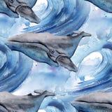 与鲸鱼的背景 无缝的模式 免版税图库摄影