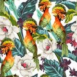 与鸟和异乎寻常的花的无缝的样式 图库摄影