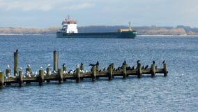 与鸟的人行桥和一只货船在背景中 库存图片