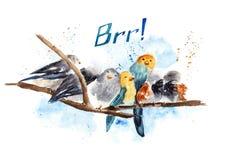 与鸟的例证在水彩 免版税库存照片