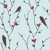 与鸟的圣诞快乐看板卡 免版税图库摄影