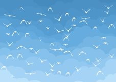 与鸟的天空 库存照片