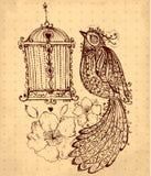 与鸟的手拉的例证 免版税库存照片